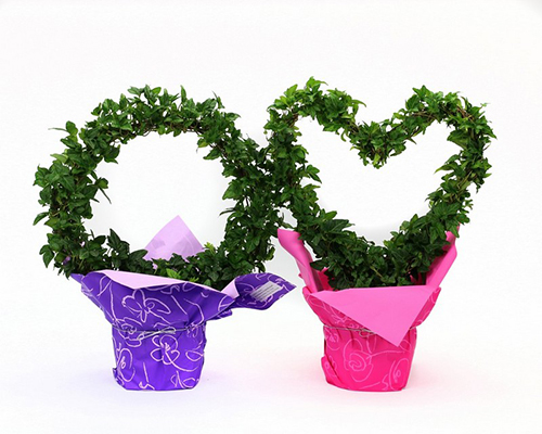Valentine Topiary in Mylar Wrap